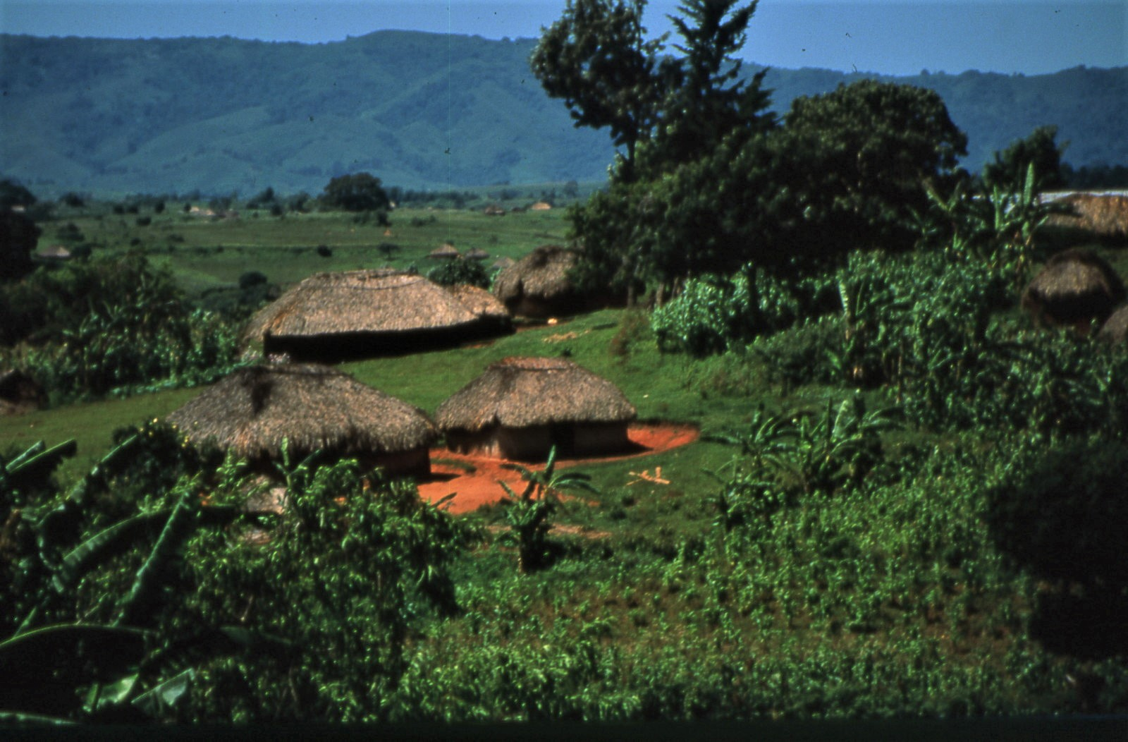 Mbulu landscape with traditional huts.
