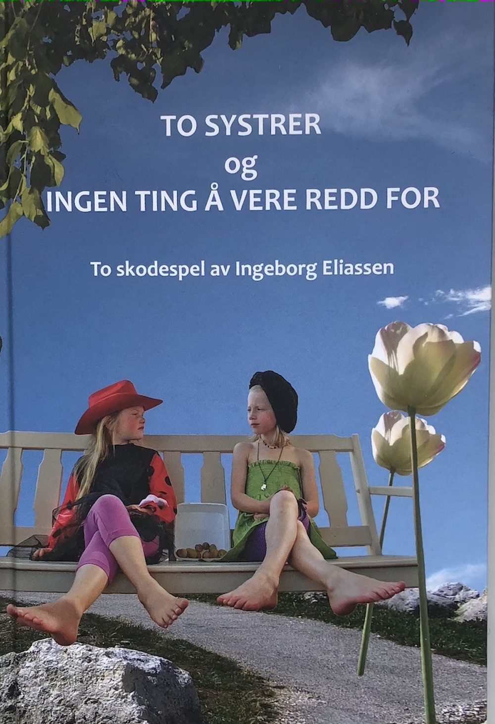 Bokomslag To skodespel design Elin Hassel Iversen